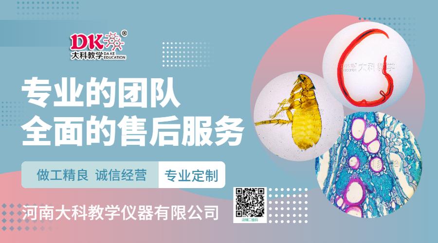 千赢网页手机版国际官网插图 (2)